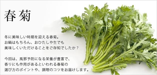 知る・楽しむ [春菊の豆知識] / ...